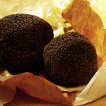 Fresh Frozen Truffle from the Périgord region