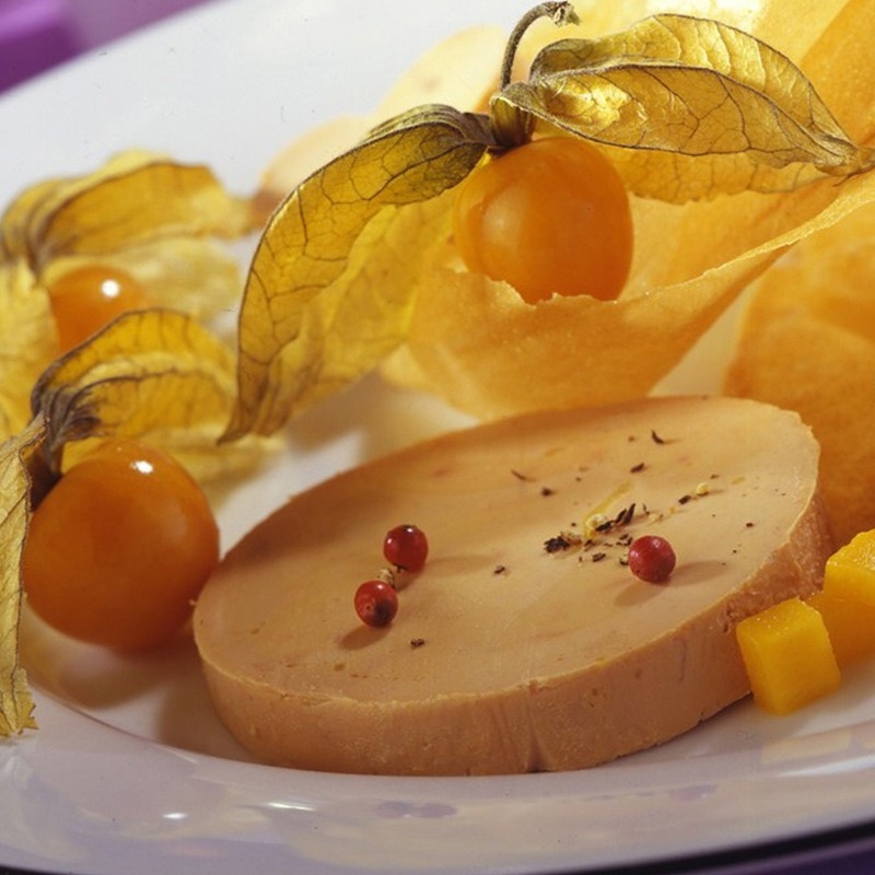 Assiette-Bloc-Foie-Gras-Oie-Perigord-France
